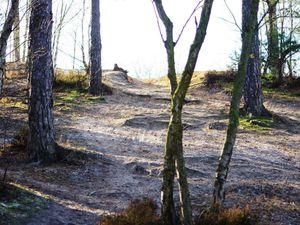 Glace givrée pour cette randonnée du 22 janvier