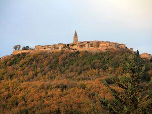Castelnau-de-Montmiral et Puycelsi