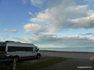 Quelques rorquals sont visibles depuis le camping en bord de plage
