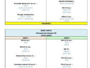 CHAMPIONNAT DEPARTEMENTAL DES EQUIPES NAT-TF-IR