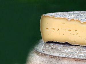 Le Saint Nectaire, Le fromage auvergnat !