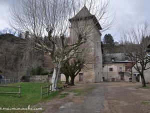 La cour du château.