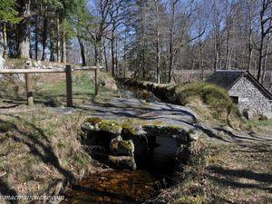 Les ''ponts planches'' ou ''ponts de pierres'' guident nos pas.    (clic sur les photos pour les agrandir)