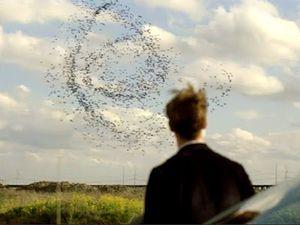 La spirale. Un symbole pédophile et satanique est présent sur la gourde de Glass. Ce symbole apparaît également dans la série HBO True Detective saison 1. Une spirale bleu a été observé à plusieurs reprises dans le ciel, notamment en Norvège en 2009, sans que d'explications rationnelles ne puissent l'explicité.