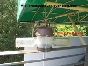 Modèles de pièges à frelons pour apiculteurs