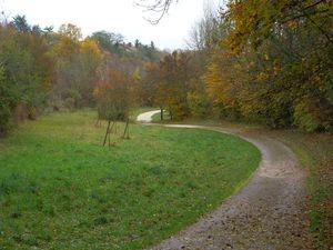 Combe Persil, cadole, Hélébore, fétide, vue sur Corcelles-les-Monts, vue de la combe, Dijon en contrebas.
