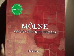 Réception du premier livre physique Môlne, les cicatrices infernales !