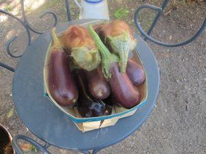 Petit panier de légumes du jardin