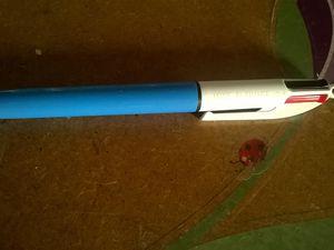 un quatre couleurs et j'ai pris aussi une dizaine de bâton de colle au cas où