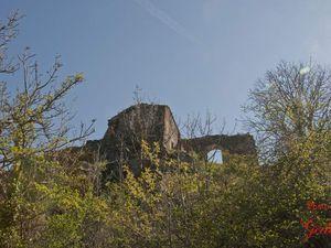 Nous montons jusqu'aux ruines du château.