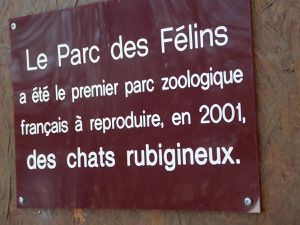 Parc des Félins and Cie