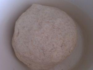 Petits pains de campagne au thermomix