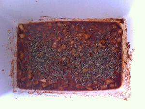 Filet mignon à la provençale au barbecue Dukan