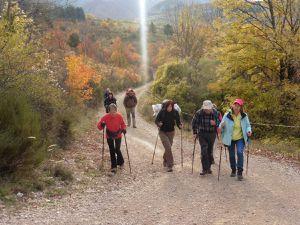 FETE DES BERGERS - Ascension du TRAINON - Nov 2015