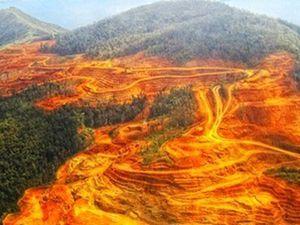 Non à la mine d'or industrielle en Guyane !