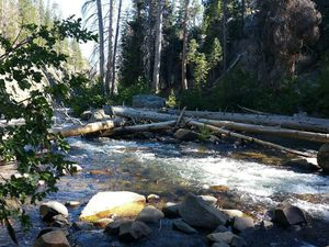 Yosemite National Park (2)