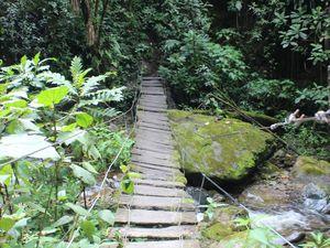 Quelques ponts (plus ou moins rassurants) à traverser durant la marche.