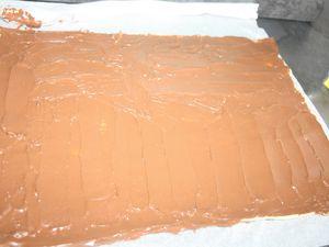 Les Palmiers Nutella Pralin