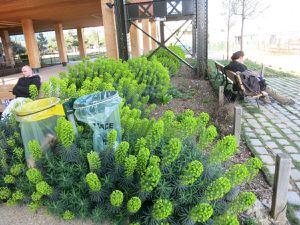 Le jardin Rosa-Luxembourg pour se mettre au vert et au frais