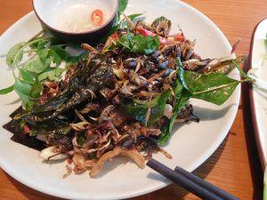 Mon dernier repas sur Hanoi, certainement l'un des meilleurs (sans plaisanterie). Criquets grillés avec feuilles de citronnelle + piment doux + oignons, le tout grillés... Ummm