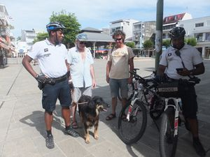 Hoëdic, chien policier