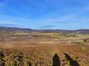 """Ca c'est l'effet """"Aberdeen après les Highlands"""". Tu fais 5 heures de route dans la journée pour revoir un peu de Highlands et de beaux paysages."""