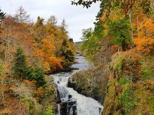 Reekie Linn Waterfalls : Moi j'ai le vertige, à un moment je crois que j'ai craqué... Même accroché à un arbre je me sentais mal ! Mais bon, on y travaille, on y travaille...
