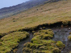 De Velbastaður (photo1) à Syðradalur (pas de photo, on a fait demi-tour car cela ressemblait juste à une grosse ferme)...)