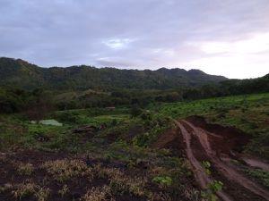 Les plantations, le paysage alentour et la pluie !