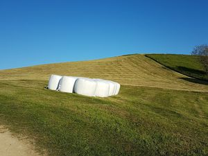For the farmer friends, the hay harvest is clear/Pour les amis fermiers les foins finis