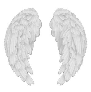 Go Back > Pix For > Black Angel Wings Png