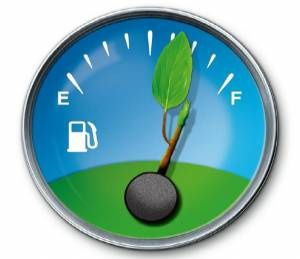 Guidare verde e spendere meno: arriva l'eco-driving