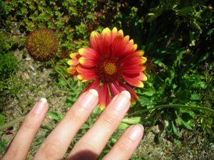 Soins des ongles, mes ongles au naturel...