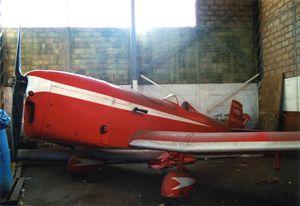 Les Caudron monoplans survivants
