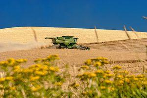 L'accaparement de terres et la concentration foncière menacent-ils l'agriculture et les campagnes françaises ?