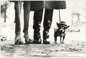 Elliott Erwitt, un grand maître de la photographie à Paris