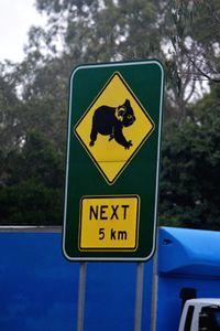 Ko ko ko, ko Koala