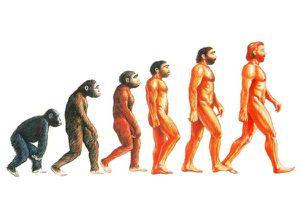 Omaggio a Darwin