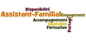 CONDITIONS DE TRAVAIL DES ASSISTANTS FAMILIAUX