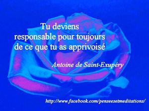 Responsable pour toujours : A. de Saint-Exupéry