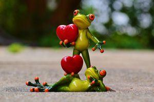 Le coeur des autres, proverbe irlandais