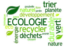 L'oxymore de l'écosocialisme…
