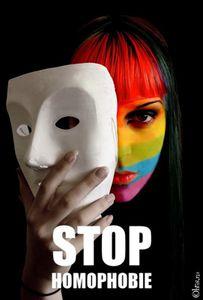 Chroniques de la haine homophobe ordinaire