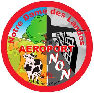 Nantes : 10e manifestation mensuelle contre l'aéroport et son monde