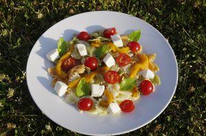 Farfalles tricolores en salade