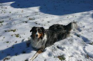 Roulades sur la neige