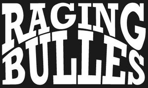 Raging Bulles à Toulon - 24 avril 2014