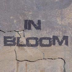 Le groupe In Bloom (Nantes)