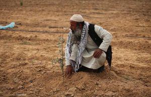 Israelo : miloj da Israelaj araboj memorfestas la « Tagon de la Tero »
