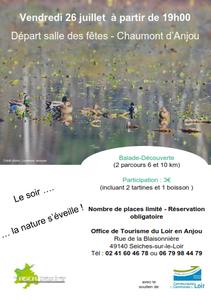 26 juillet : Balade nocture à Chamont d'Anjou
